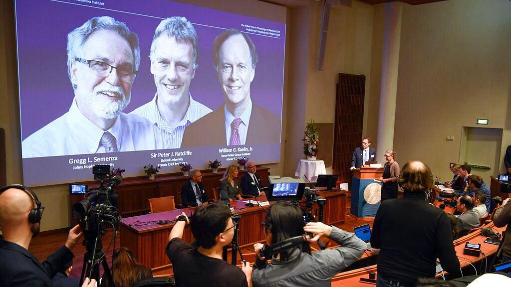 Three Get Nobel Medicine Prize for Learning How Cells Use Oxygen