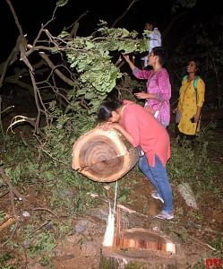 A protestor hugs a tree at Aarey colony on Friday, 4 October.