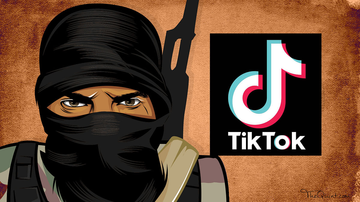 TikTok Becomes New Hub For ISIS Propaganda, Many Accounts Removed