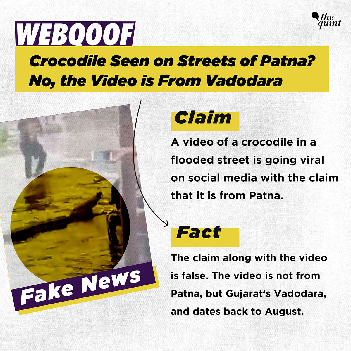 Crocodile Seen on Streets of Patna? No, the Video Is From Vadodara