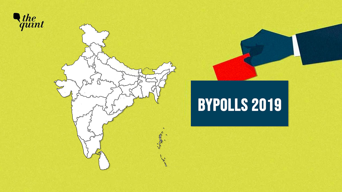 57% Turnout in Bypolls to 51 Assembly and 2 Lok Sabha Seats