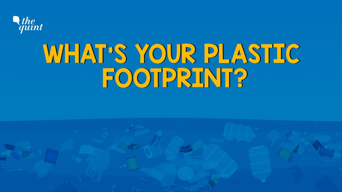 How much single-use plastic waste do you add to the environment? Take this test to find out.
