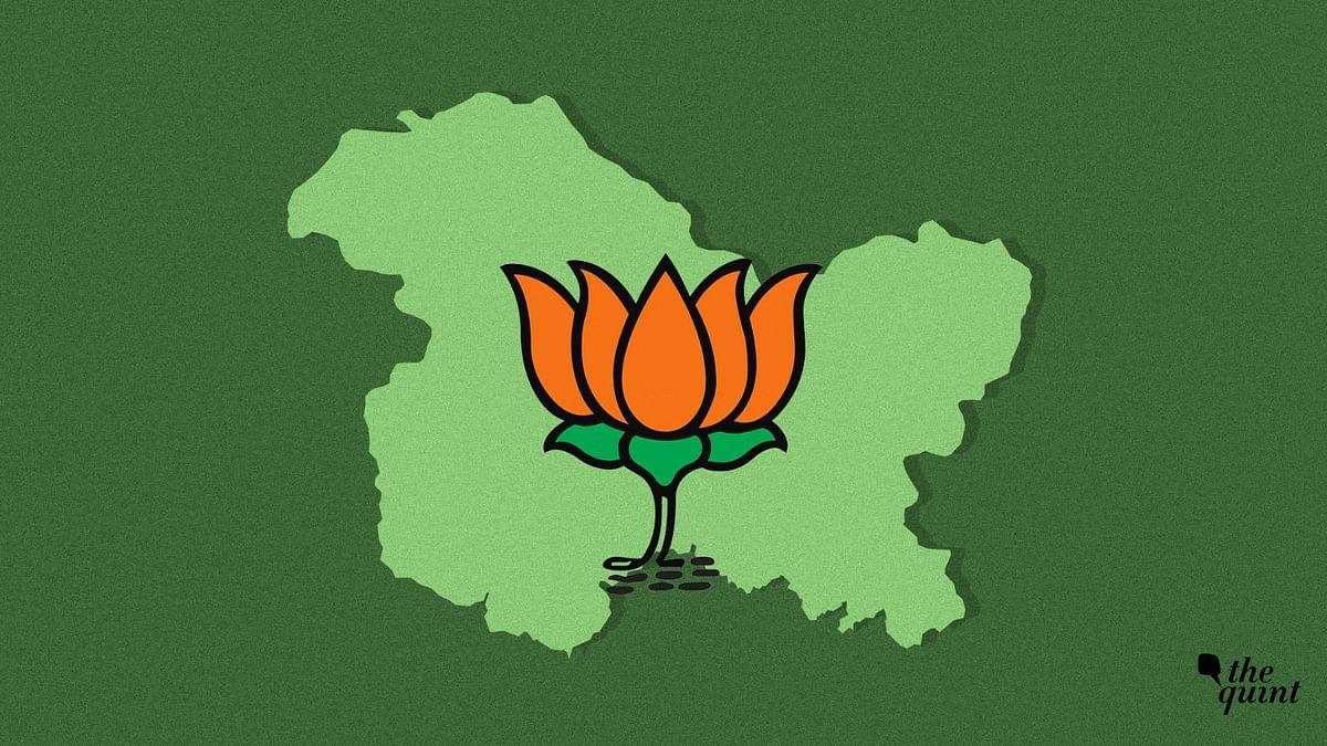 BJP Allies Question Govt Decision to Allow EU MPs to Visit Kashmir