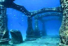 The photo is from the Neptune Memorial Reef.