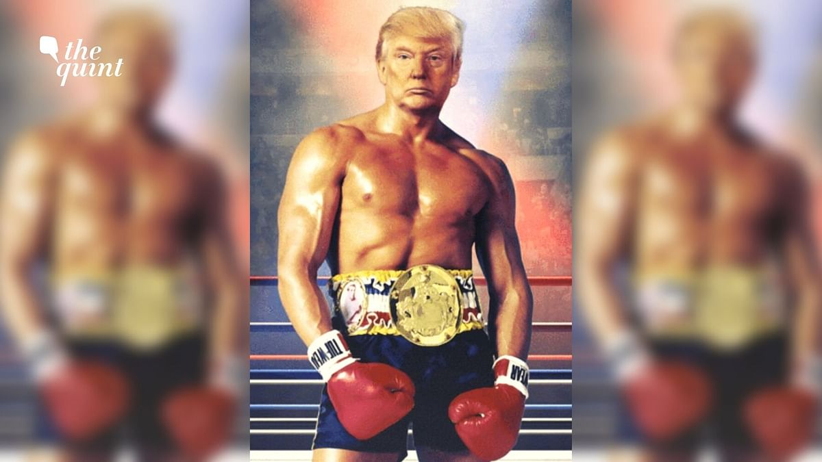Donald Trump Tweets Photo of Himself as Shirtless Rocky Balboa