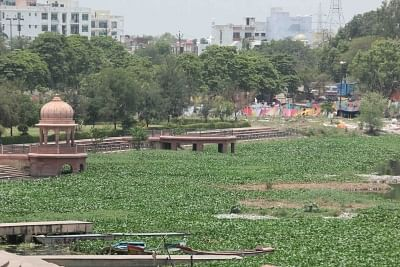 Lucknow: A view of the Gomti river covered with the carpet of water hyacinth, in Lucknow on June 26, 2019. A survey carried out by a team of environmentalists has found that the dissolved oxygen (DO) in the Gomti river has dipped to dangerous levels and can no longer sustain aquatic life. The DO level should be at least 8.5 mg/litre to make river water fit for human consumption while a drop below 5 mg /litre makes it unfit for flora and fauna. The DO level of Gomti river water has gone down to 0