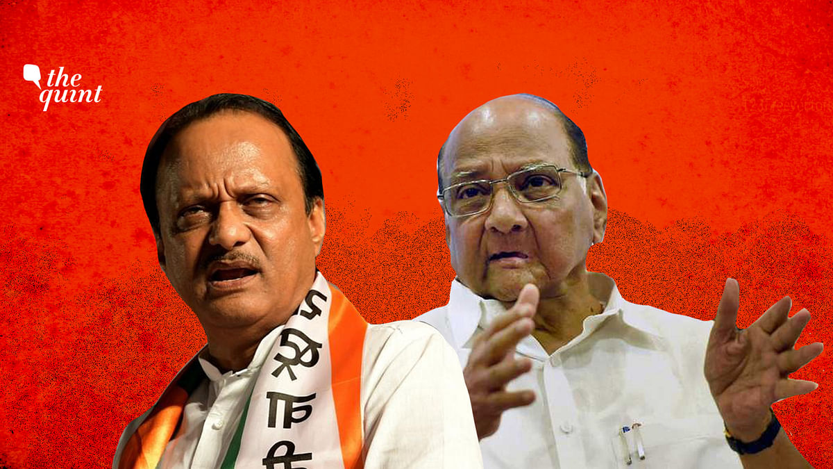 Pawars, Thackerays, Mundes: Uncle-Nephew Tussles Not New in Maha