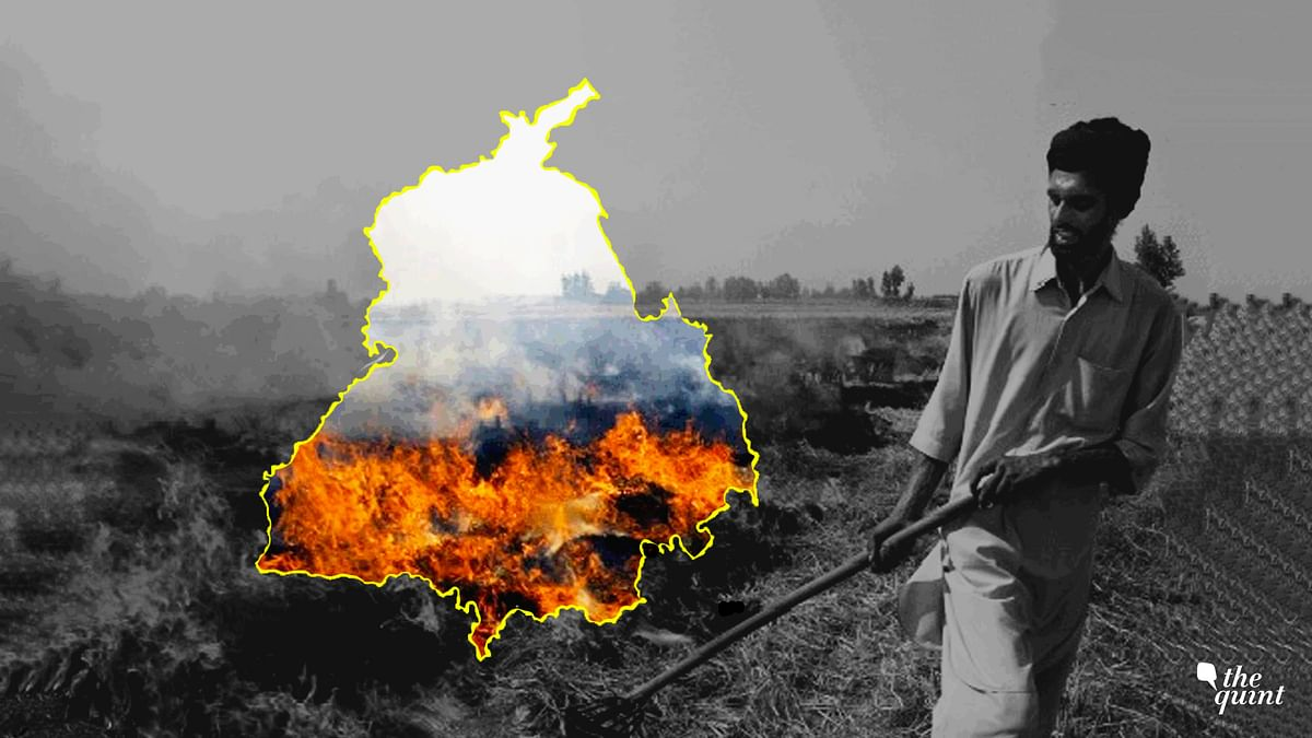 Punjab Crop Burning: How Smog of Confusion is Spread by 'Experts'