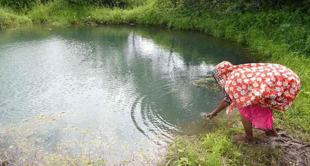 Rainwater harvesting and farm ponds play a big role in climate-smart farming.