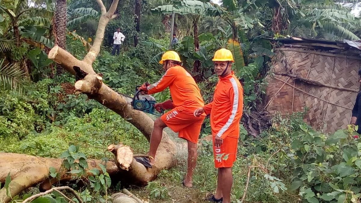 NDRF personnel have started the road clearance work in the affected areas.