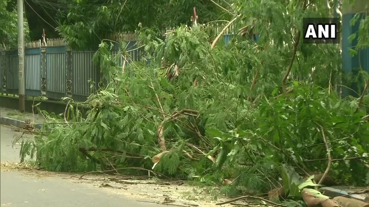 Stormy winds in South Kolkata uproots trees, damages hoardings.