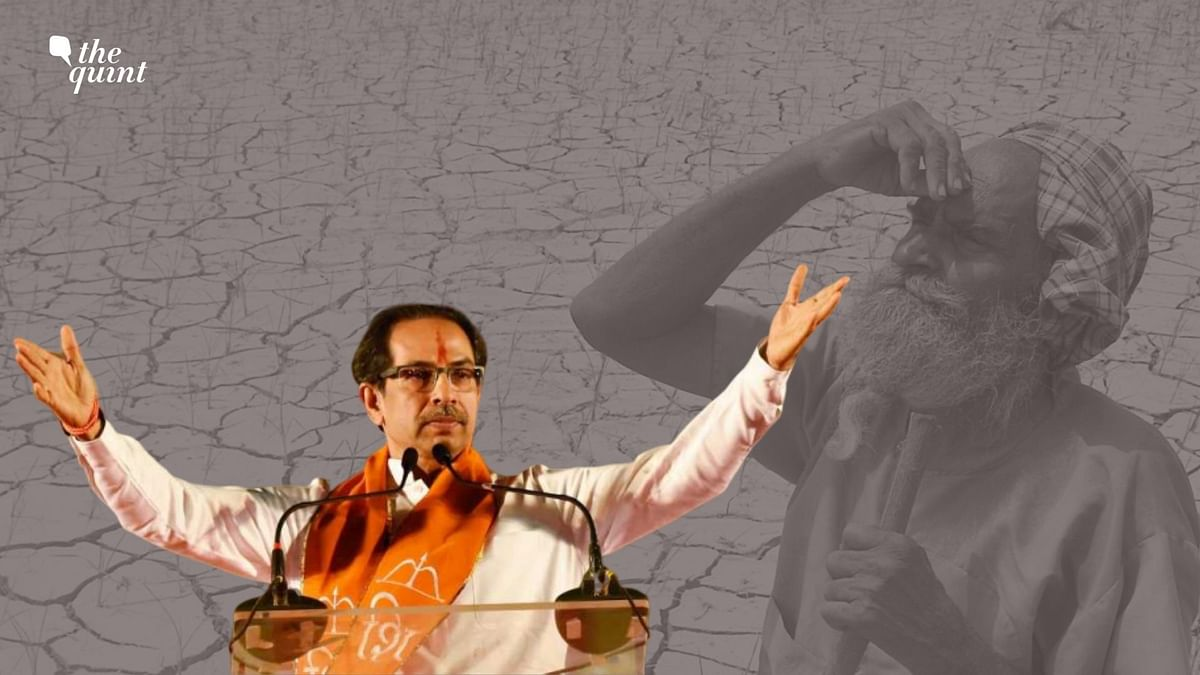 The alliance's Common Minimum Programme was revealed ahead of Uddhav Thackeray's swearing-in ceremony.