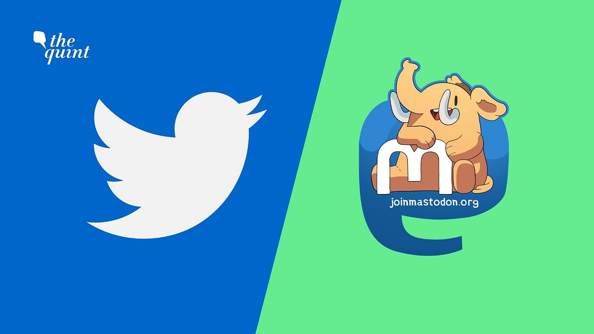 What Is Mastodon & Why Are People Leaving Twitter to Join It?