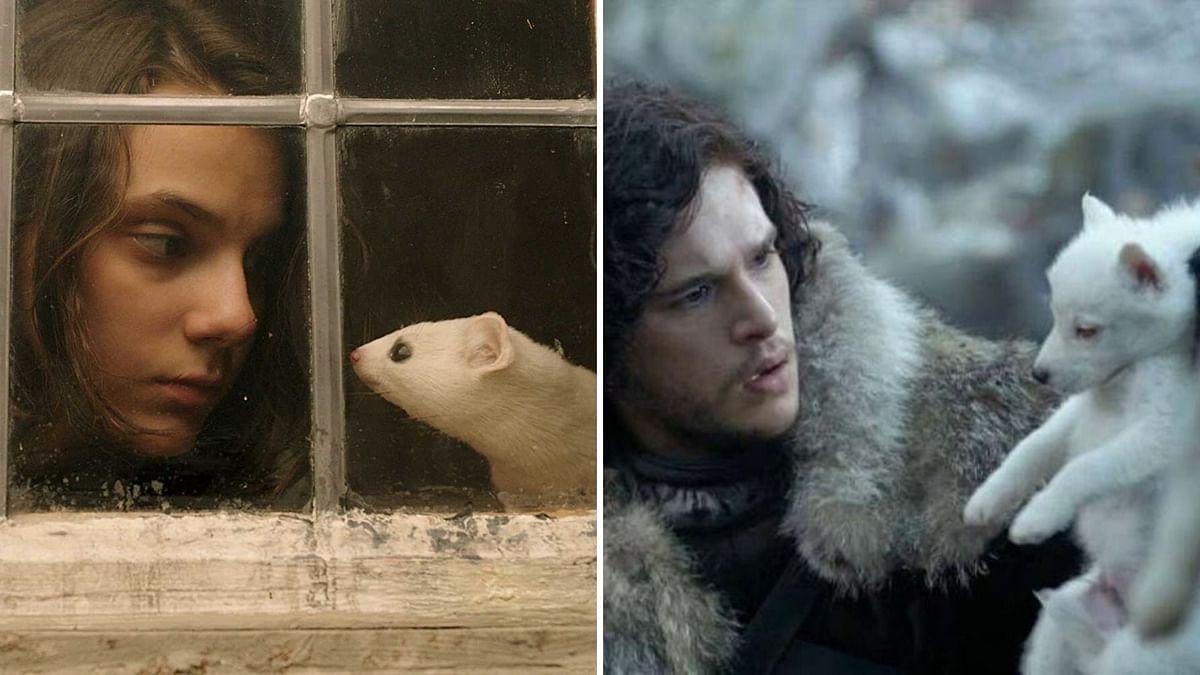 (Left) Lyra with her daemon (Right); Jon Snow with his pet 'Ghost'.