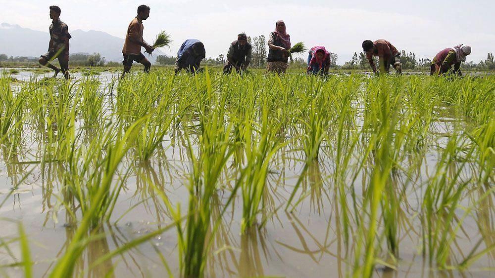 #GoodNews: Underground Water Levels Rise in 34 Marathwada Talukas