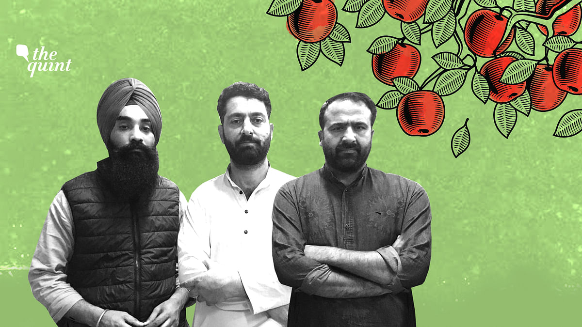 Reeling Under Loss, Kashmir's Apple Farmers Demand Relief Package