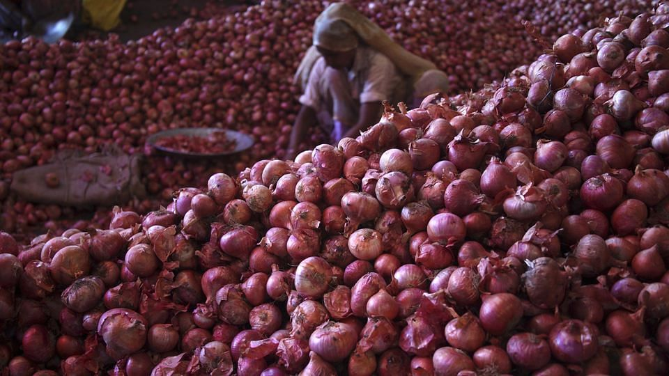 A worker sifts through piles of onions.