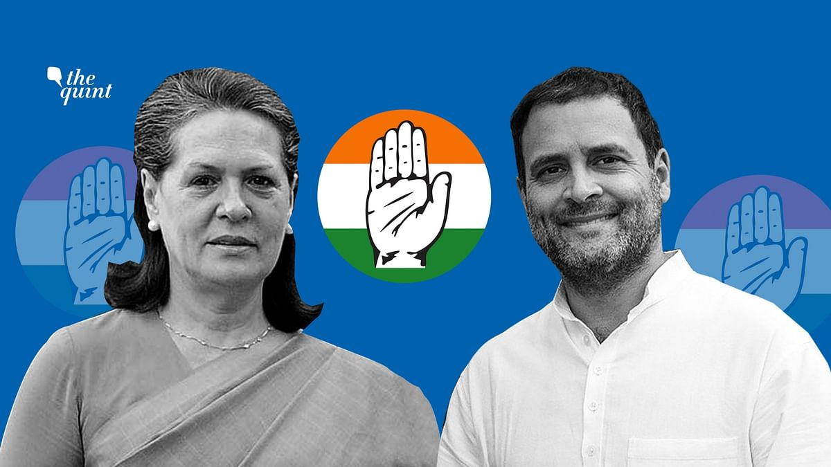 Image of Sonia Gandhi and Rahul Gandhi used for representational purposes.