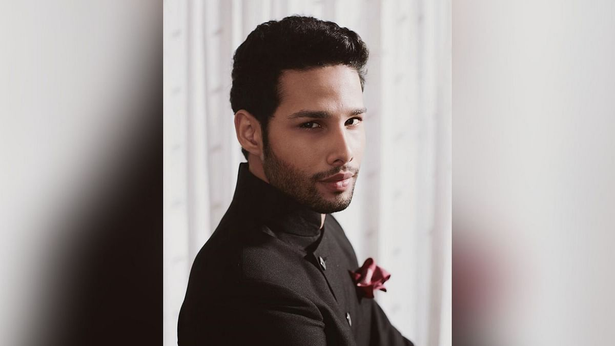 I Don't Support Violence From Any Side: Siddhant Chaturvedi