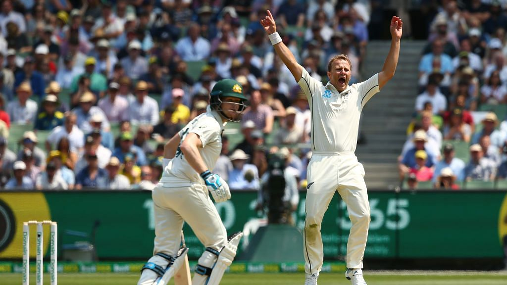 Australia skipper Tim Paine was batting on 79 off 138 deliveries when he was dismissed by New Zealand's Neil Wagner.