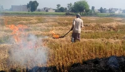 A farmer burns stubble after the harvest of paddy, at an agricultural field on the outskirts of Amritsar. Photo used for representative purposes.