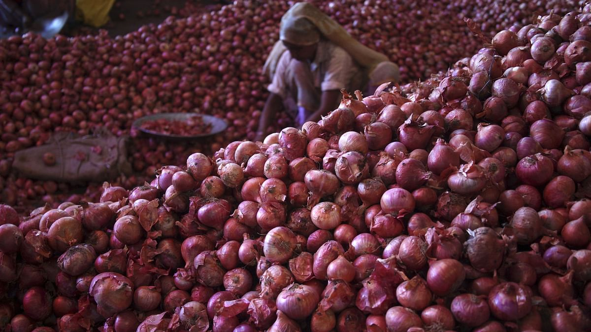 790 Tonnes of Imported Onions Reach India: Govt Official
