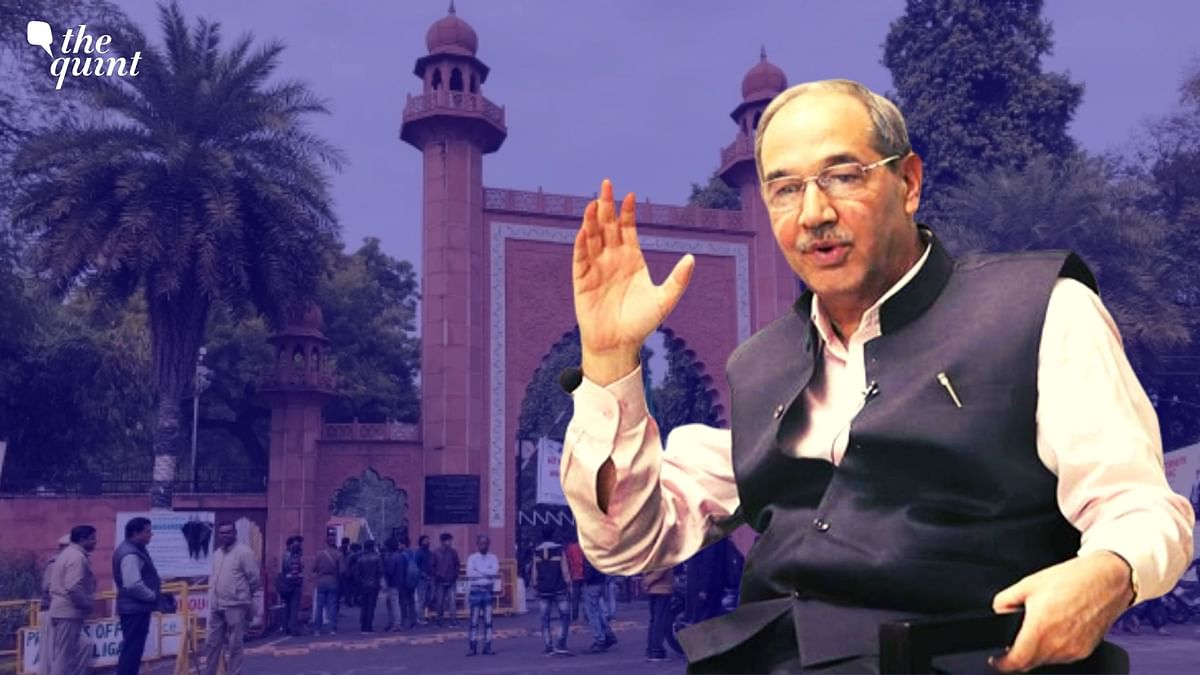 """Anti-social/lumpen elements intermingled with students, and forcibly broke open the university gate,"" AMU vice-chancellor Professor Tariq Mansoor said."