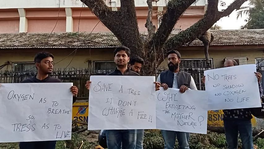 Tripura Youths Protest Felling of Trees for 'Smart City' Plan