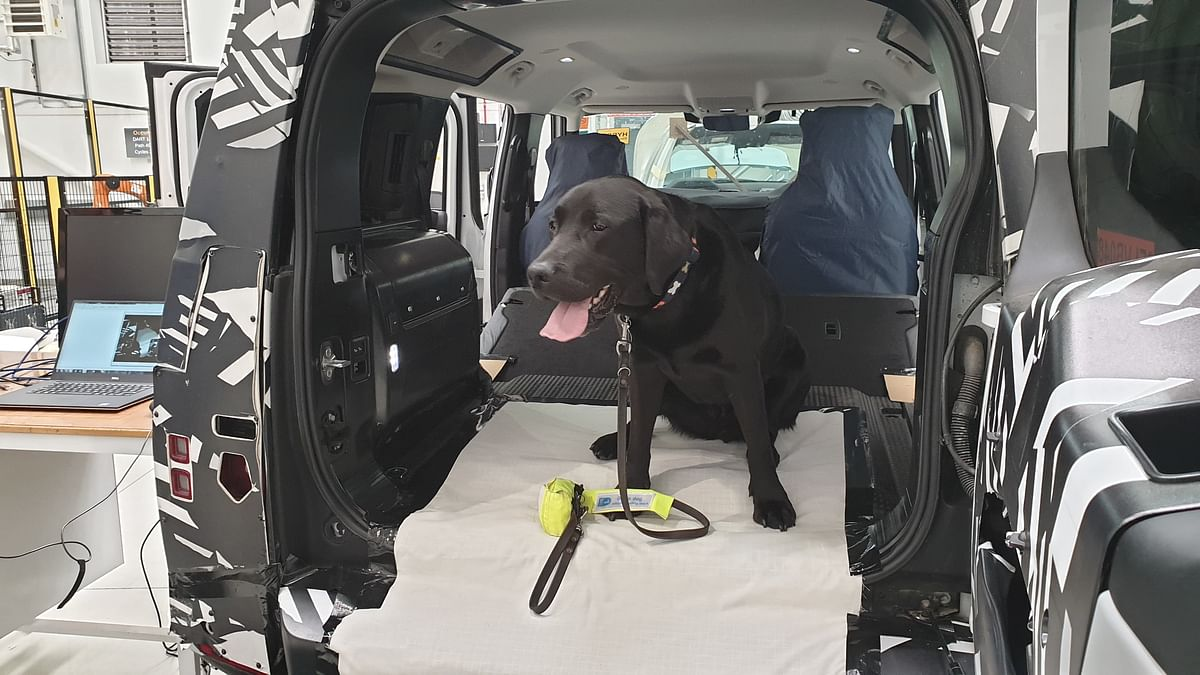 Land Rover Develops 3D-Printed  Dog Paw To Scratch-Test Its Paint
