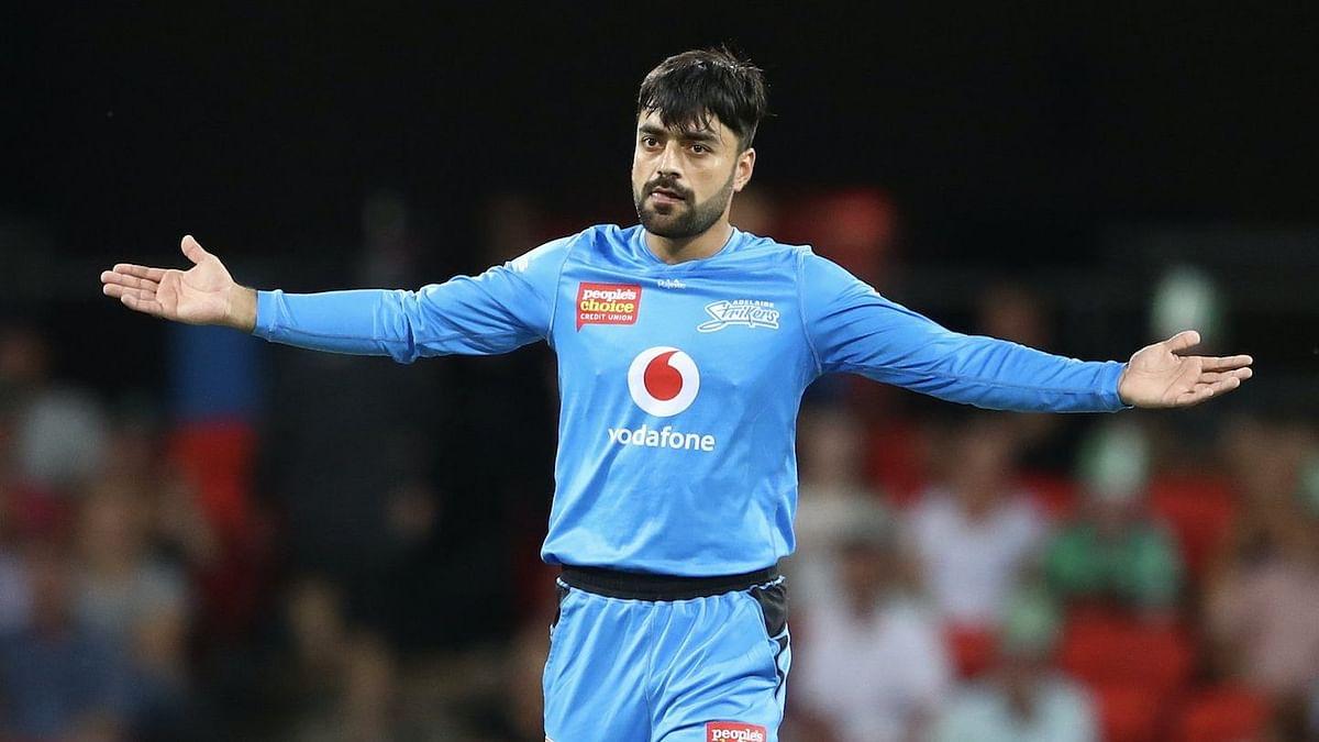 BBL: Umpire Stuns Rashid Khan With Funny Decision Reversal