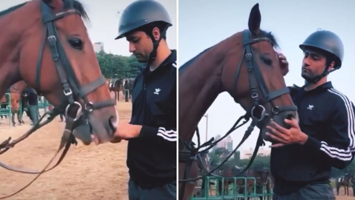 Vicky Starts 'Takht' Prep With Adventurous Horse Ride Lessons