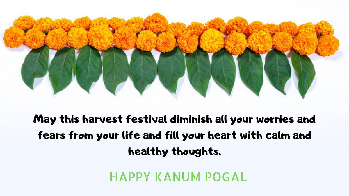 Happy Kanum Pongal Wishes in English