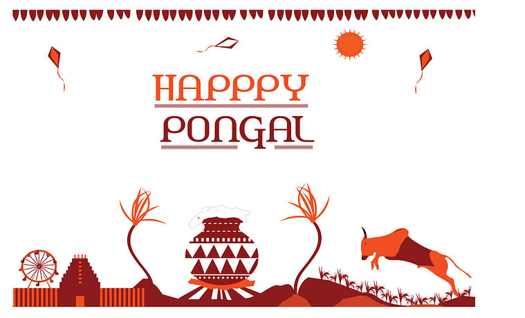 Pongal 2020 Festival Date, Significance, History and How it is Celebrated