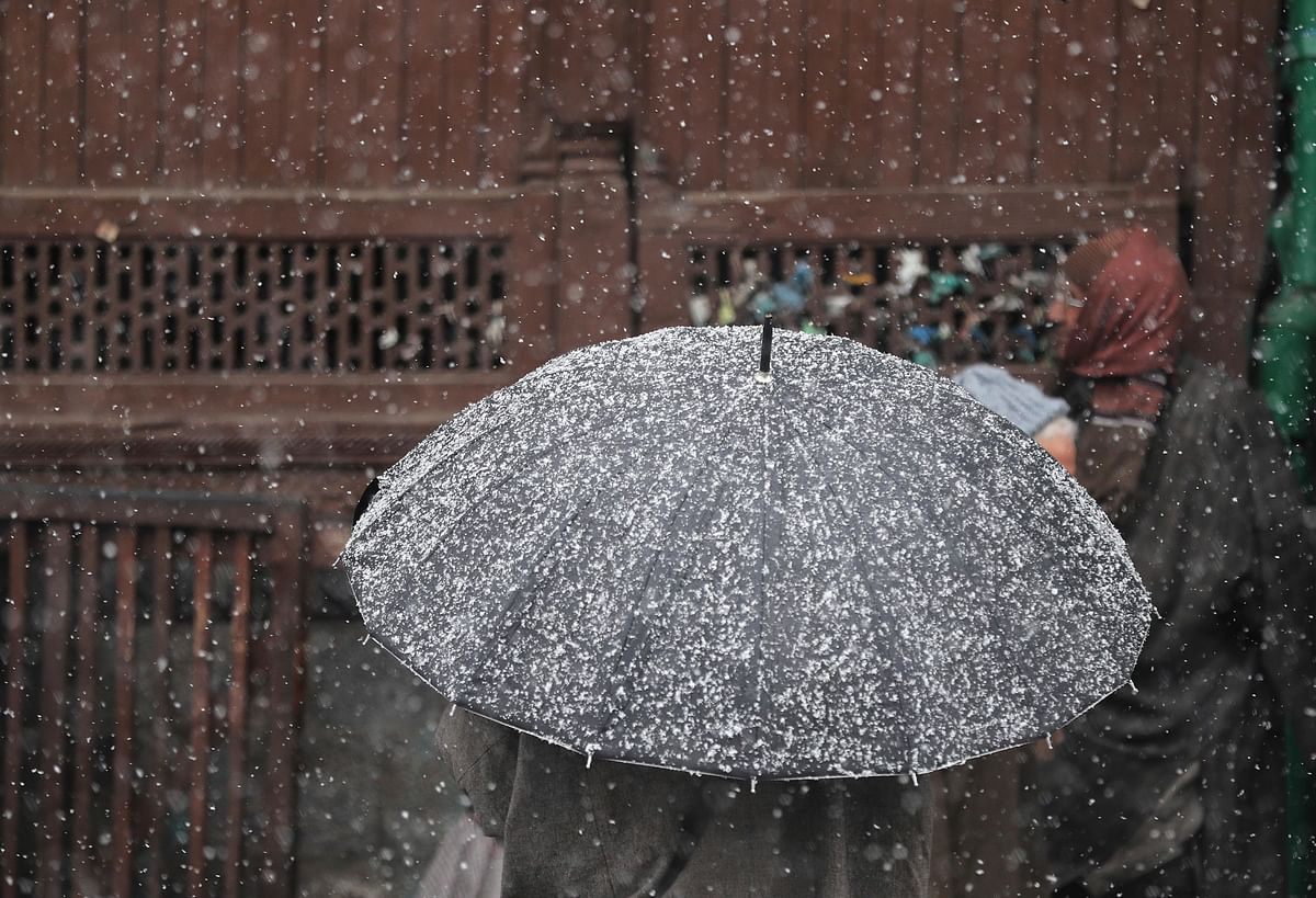 Ode to Umbrella: Functional to Fantastical