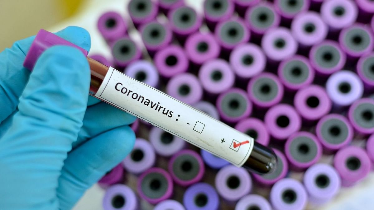 A British United Nations employee is one of the four people who have tested positive for the novel coronavirus in Senegal.