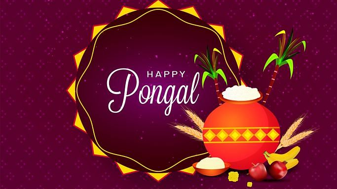 Happy Pongal Wishes: Quotes, Images, Greetings for  Pongal 2020