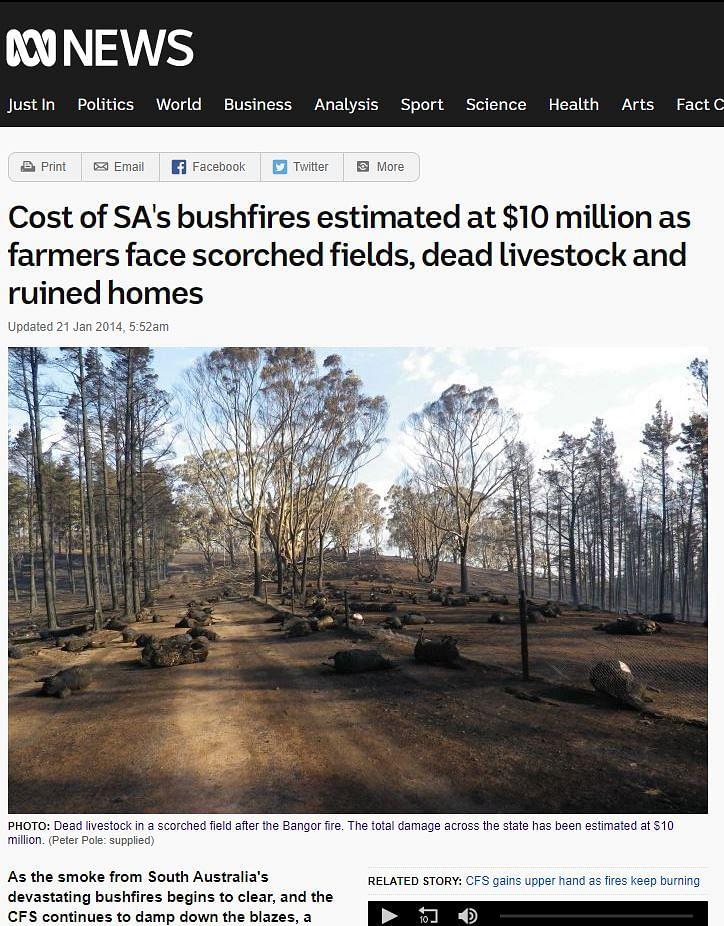 Tigers Engulfed in Flames of Australian Bushfires? No, Think Again
