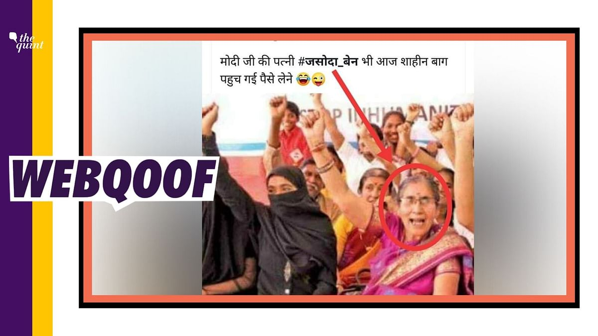 Jashodaben Protesting in Shaheen Bagh? Nope, Picture is Old