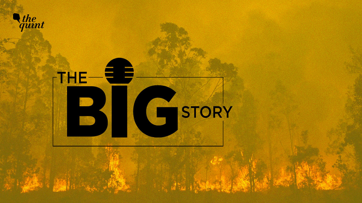 How Climate Change is Sparking Australian & Indian Forest Fires