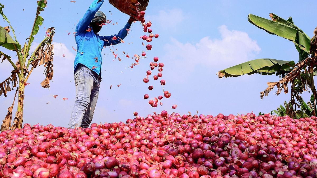 Govt Imposes Stock Holding Limit on Onion Traders  to Check Prices