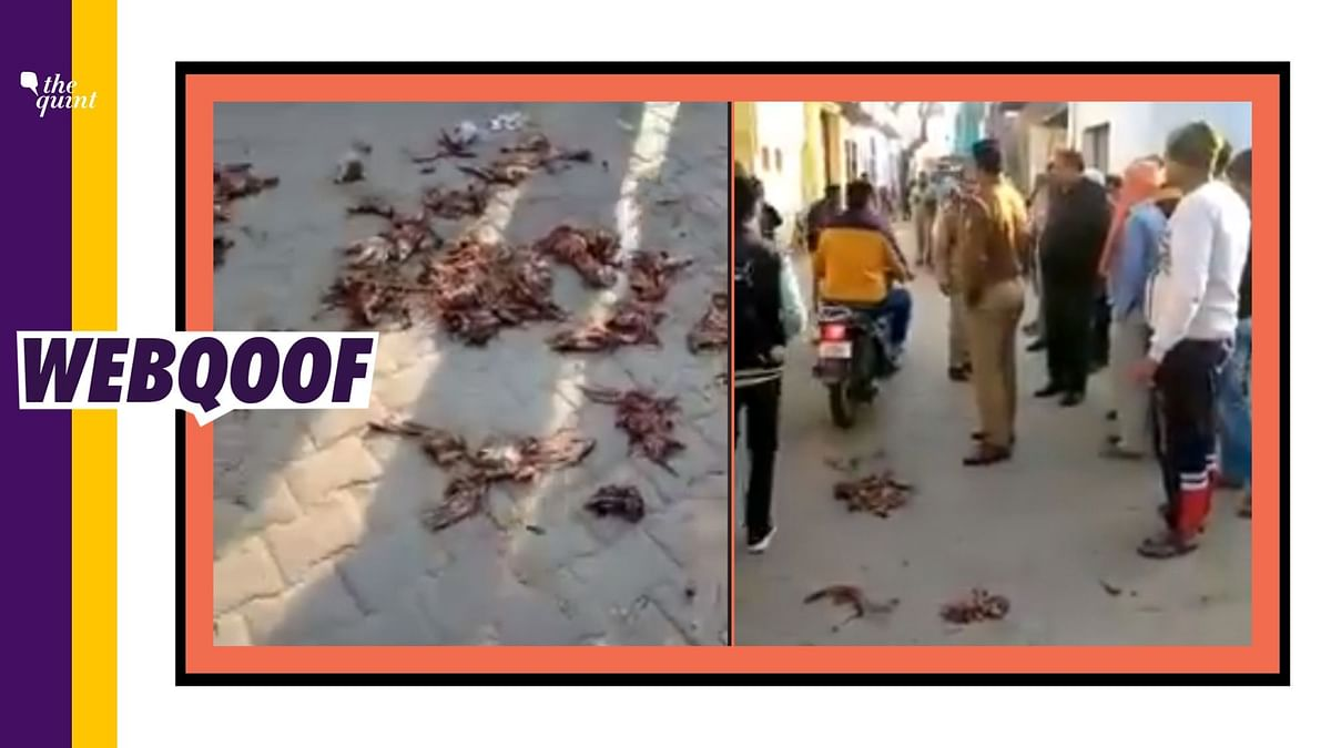 A viral video falsely claimed that Muslims threw pieces of meat near a Hindu temple in Uttar Pradesh's Hathras.