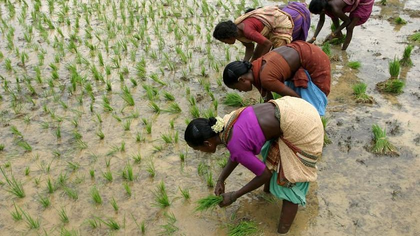 Why Women Are Our Best Bet to Tackle India's Water Crisis