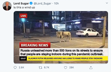 Russia Using Lions to Make People Stay Indoors? No, it's Fake News