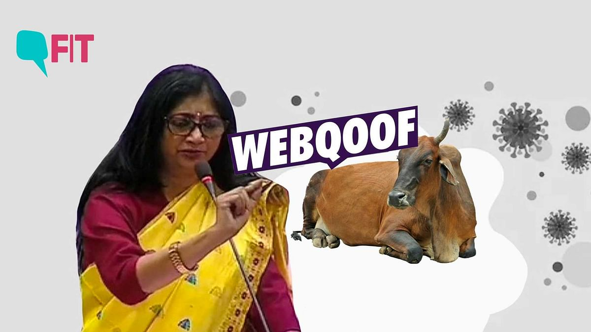 FIT WebQoof: Can Cow Dung or Cow Urine Treat COVID-19?
