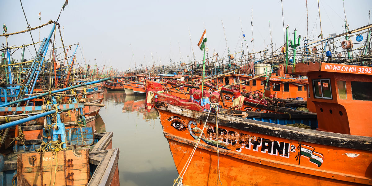 Trawlers returned from deep sea parked at Petuaghat fishing harbour in East Medinipur district. Researchers claim the number of boats engaged in fishing increased by 25% between 2002 and 2015.