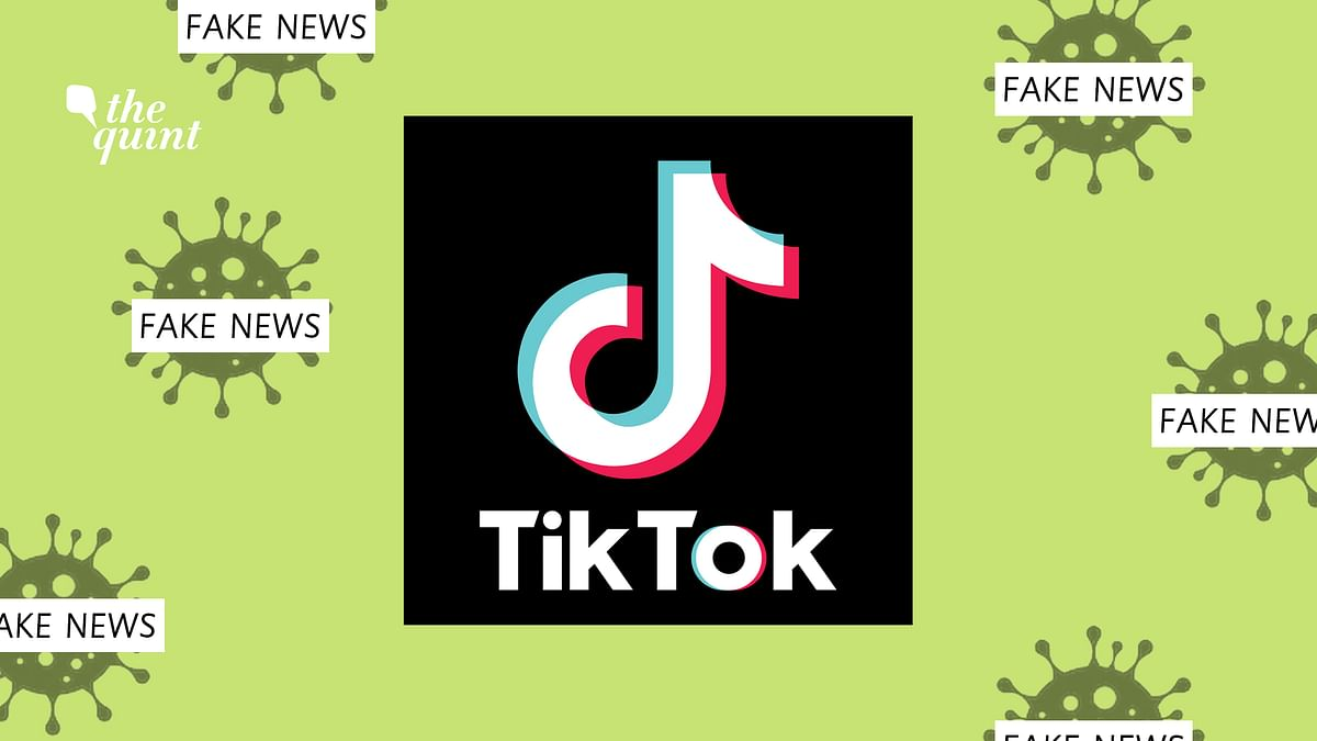 Govt Steps in As TikTok Sees Surge in Fanatical COVID-19 Fake News