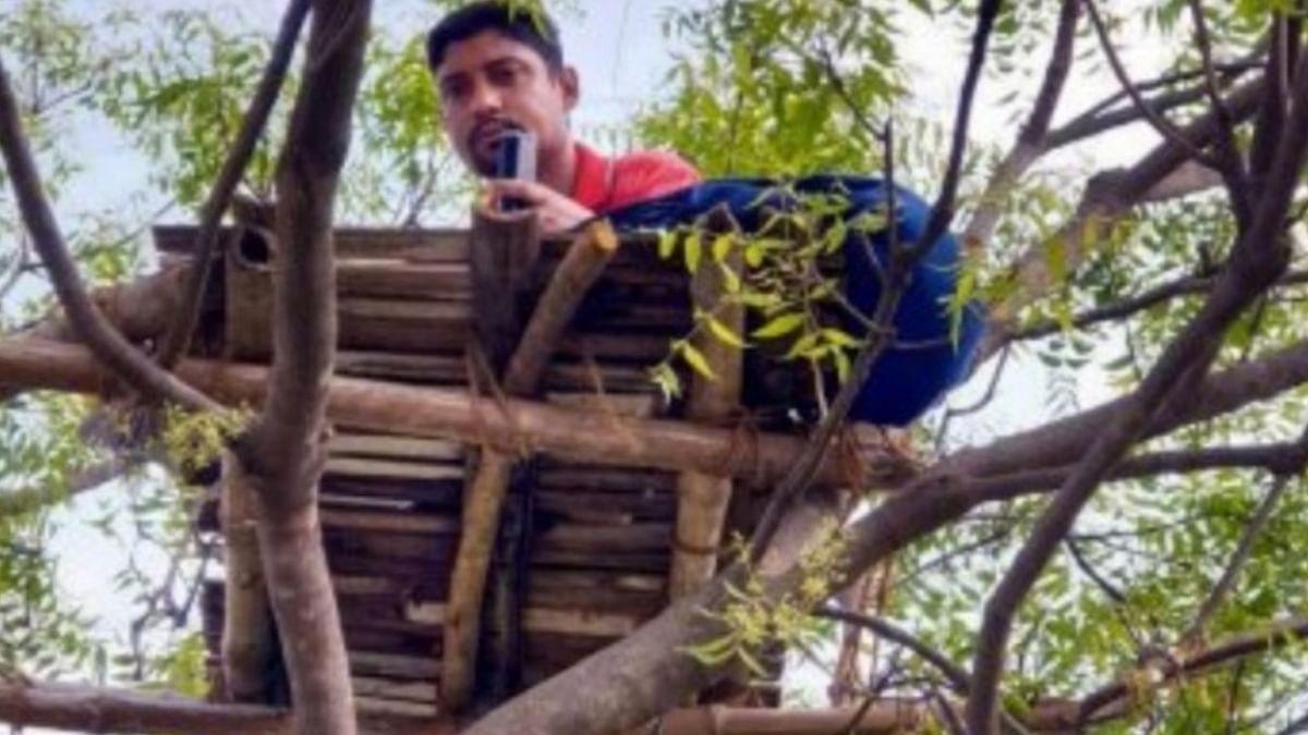 COVID-19 Heroes: Teacher Climbs Tree to Cross Internet Hurdle