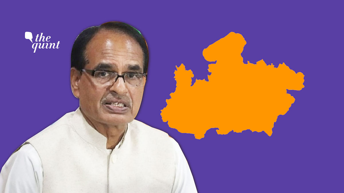 Madhya Pradesh Planning 'Cow Cess' to Raise Money for Cow Sheds