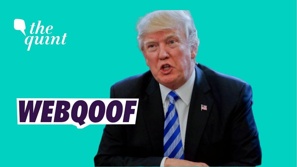 Trump's Bizarre Claims: 'Disinfectant, Sunlight Can Kill COVID-19'