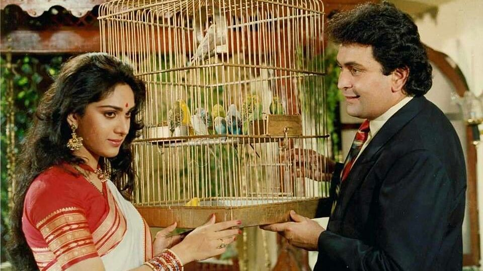 Meenakshi Sheshadri and Rishi Kapoor in <i>Damini.</i>